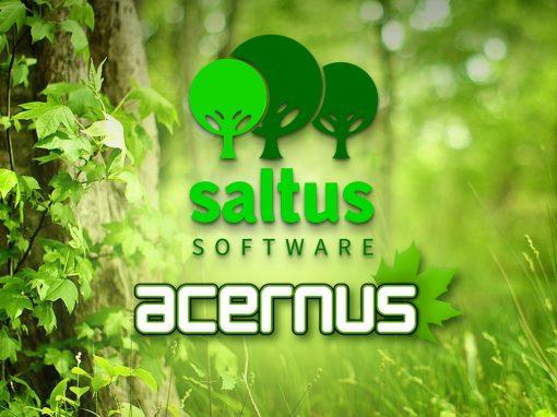Acernus branding